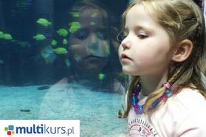 Blog sposoby nauki dziecko